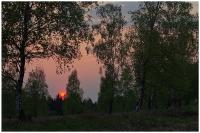 Foto 04 - Frühlingsabend auf dem Struffelt