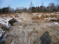 Mulch- bzw. Feuerschutzstreifen auf dem Struffelt - 2 Bahnen breit