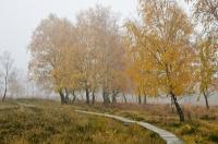 Foto 05 - Auf dem Struffelt im Herbst - 02