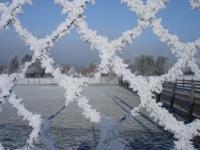 Foto 59 - Winterlicher Durchblick auf Rott am 01. Februar 2011