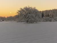 Foto 63 - Sonnenuntergang im Winter
