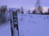 Foto 64 - Winter auf dem Struffelt