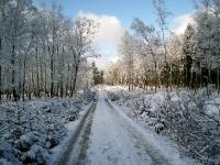 Foto 66 - Eifelsteig im Winter