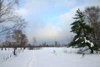 Foto 83 - Der Struffelt am Ende des Brettersteiges seitlich des Sees