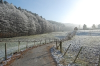 Foto 85 - Frostromantik in Rott