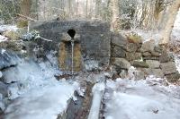 Foto 86 - Der Rotter Frost-Froschkönig will nicht mehr alleine sein
