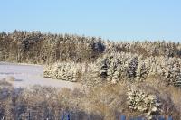 Foto 87 - Schnee bei den Großeltern - 01