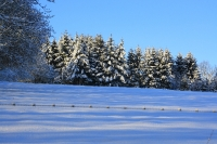 Foto 88 - Schnee bei den Großeltern - 02