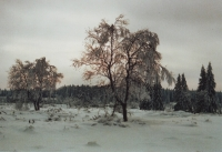 Foto 50 - Schneelandschaft