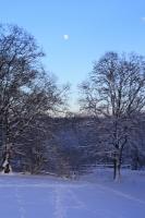Foto 90 - Schnee bei den Großeltern - 04